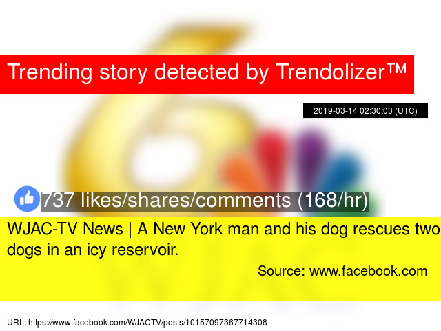 WJAC-TV News | A New York man and his dog rescues two dogs in an icy